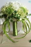 Zelená a biela zápas loptu hodváb chryzantémy nevesta drží kvety