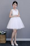 Očarujúce Obrad Čipka Chýbať Bez rukávov Letné Kvetinové šaty